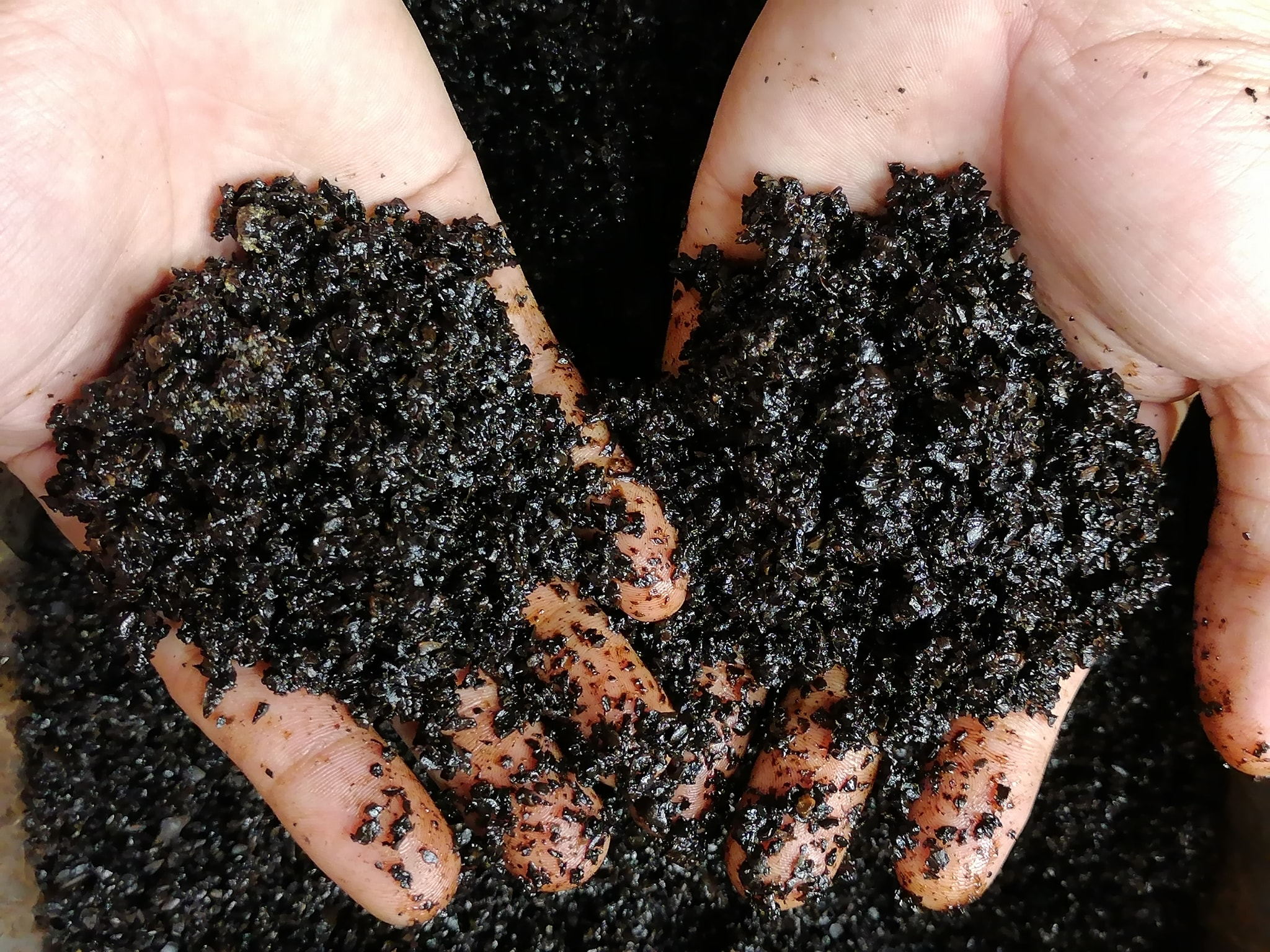 How to Reuse Coffee Grounds for their Hidden Potential